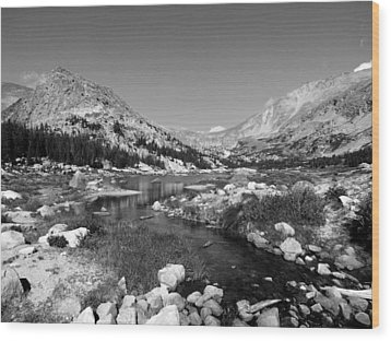 Lawn Lake Black And White Wood Print