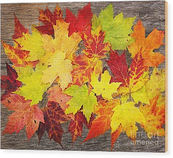 Layered In Leaves Wood Print by Kathi Mirto