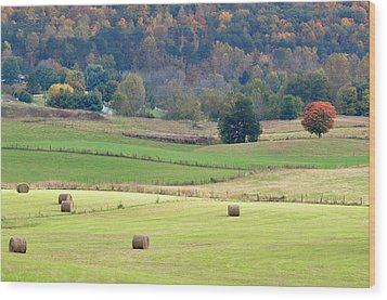 Layers Of Fields Wood Print by Jan Amiss Photography