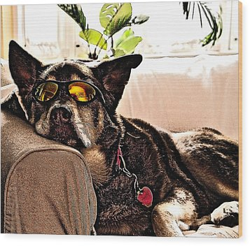 Lazy Dog Wood Print by Jim DeLillo