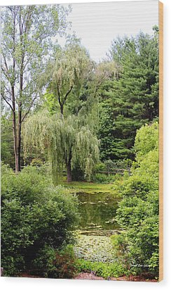 Lazy Pond Wood Print by Deborah  Crew-Johnson