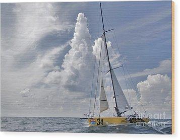 Le Pingouin Race Yacht Open 60 Wood Print by Dustin K Ryan
