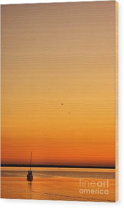 Wood Print featuring the photograph Le Voyage 02 by Aimelle