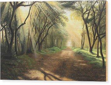 Lead Kindly Light Wood Print by Shiv