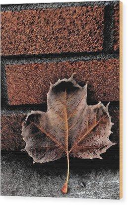 Leaf Wood Print by Cherie Duran