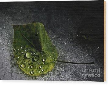 Leaf Droplets Wood Print