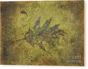Wood Print featuring the digital art Leaf In Mud Two by Randy Steele