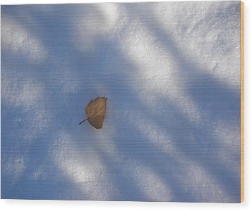 Leaf In Shadows Wood Print