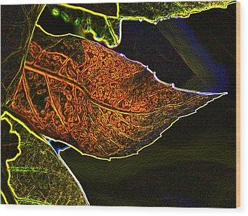Leaf Interpretation Wood Print by Norman  Andrus