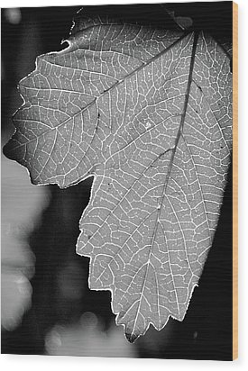 Leaf Light Black And White Wood Print by James Granberry