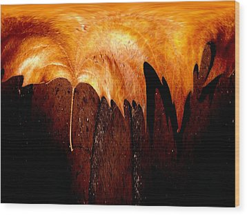 Leaf On Bricks 2 Wood Print by Tim Allen