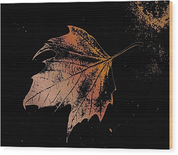 Leaf On Bricks Wood Print by Tim Allen