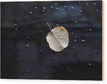 Leaf On Car Door Wood Print by Robert Ullmann