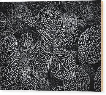 Leaf Pattern Wood Print by Wayne Sherriff