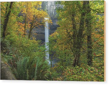 Leaf Peeping And Waterfall Wood Print by David Gn