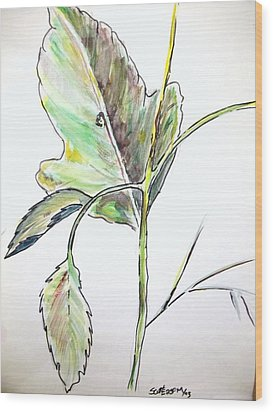 Leaf  Wood Print by Scott Easom
