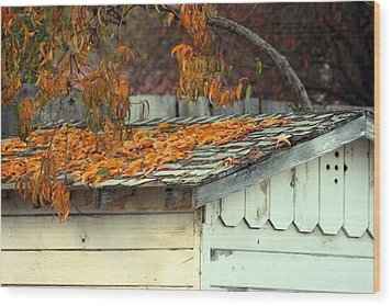 Leaf Shed Wood Print by Holly Ethan