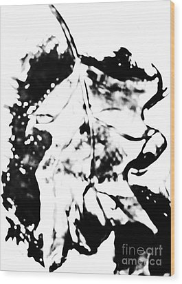 Leaf Study Black And White Wood Print by Jamey Balester