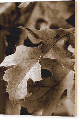Leaf Study In Sepia IIi Wood Print by Lauren Radke