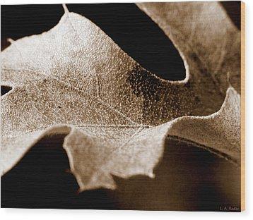 Leaf Study In Sepia Wood Print