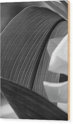 Leaf Texture Wood Print
