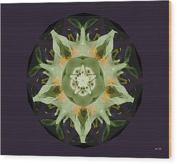 Leafy Mandala Wood Print by Rene Crystal