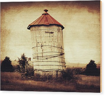 Leaning Tower Wood Print by Julie Hamilton
