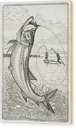 Wood Print featuring the drawing Leaping Tarpon by Charles Harden