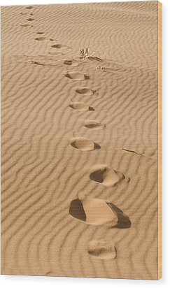Leave Only Footprints Wood Print by Heather Applegate