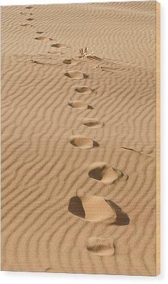 Leave Only Footprints Wood Print