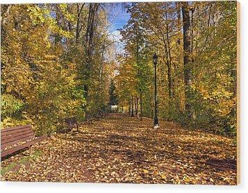 Leavenworth Waterfront Park Wood Print