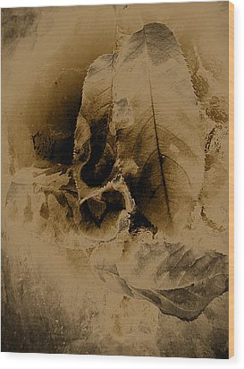 Leaves In Sepia Wood Print