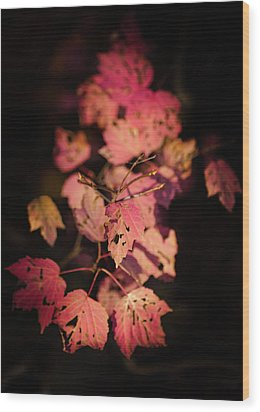Wood Print featuring the photograph Leaves Of Surrender by Karen Wiles