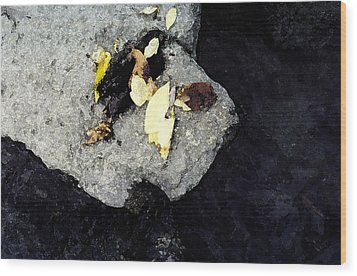 Wood Print featuring the photograph Leaves On The Rocks by Lyle Crump