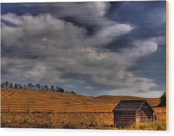 Leaving The Shed Wood Print by David Patterson