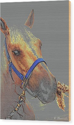 Legend Of A Horse Wood Print