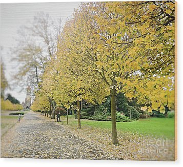 Wood Print featuring the photograph Leipzig Memorial Park In Autumn by Ivy Ho