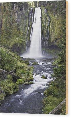 Lemolo Falls Wood Print