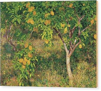 Wood Print featuring the painting Lemon Tree by Henry Scott Tuke