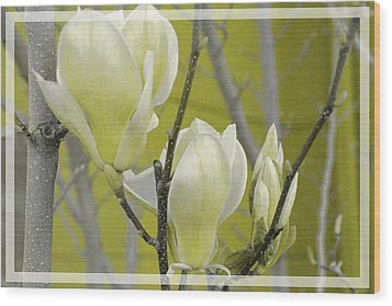 Wood Print featuring the photograph Lemon Yellow by Athala Carole Bruckner