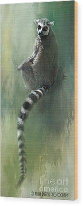 Lemur Catching Rays Wood Print