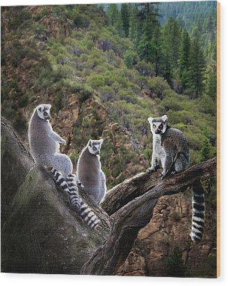 Lemur Family Wood Print