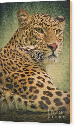 Leopard Wood Print by Angela Doelling AD DESIGN Photo and PhotoArt
