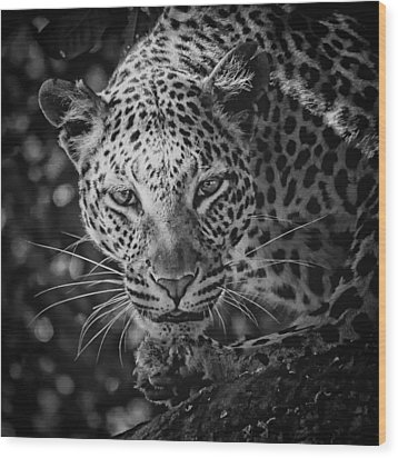 Leopard, Black And White Wood Print