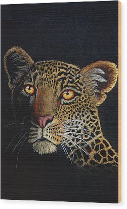 Leopard In The Dark Wood Print by Lorraine Foster