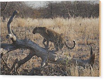 Leopard Tail Wood Print