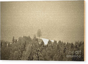 Wood Print featuring the photograph Let It Snow - Winter In Switzerland by Susanne Van Hulst