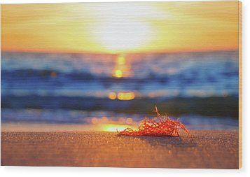 Let The Sunshine In Wood Print