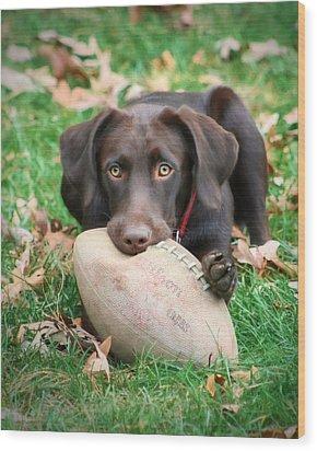 Let's Play Football Wood Print by Lori Deiter