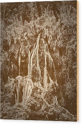 Wood Print featuring the photograph Li River Waterfall by Tom Vaughan